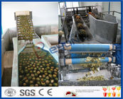 5TPH SUS304 High Speed Full Automatic Pineapple Processing Equipment For Juice Maker Machine