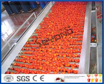 機械トマトの加工ライン十分を/半植えるトマト自動2つ- 50のT/H